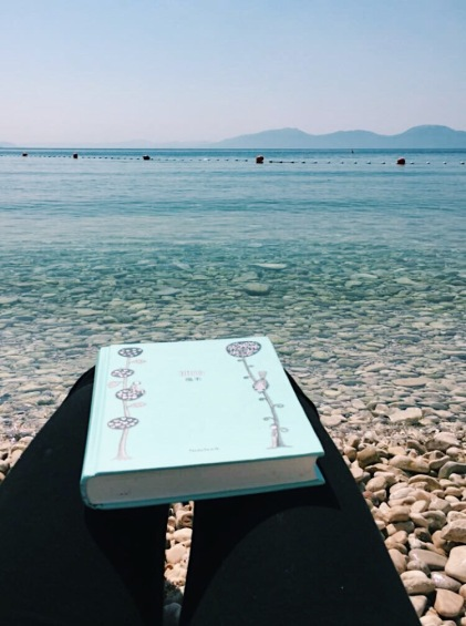 Journaling in Drvenik, Croatia