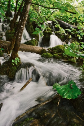 Water flows at Plitvice