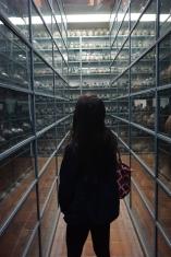 Museo de Larco
